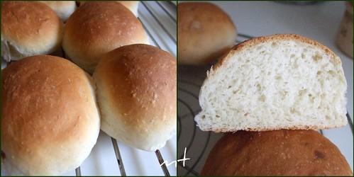 panini bianchi