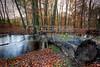 Dutch Autumn-2 (DolliaSH) Tags: canon 7d hdr photomatix tonemapping detailsenhancer canoneos7d dollia sheombar dolliash
