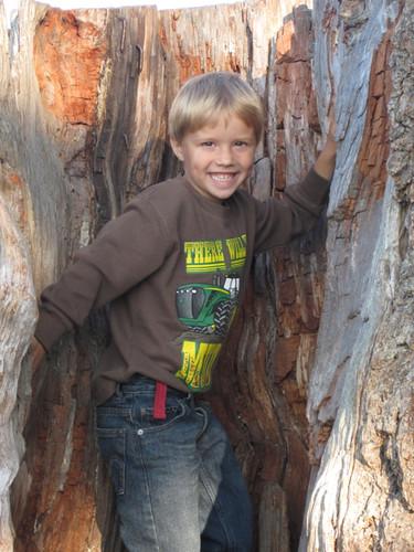 Boy in a stump