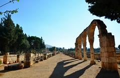 Anjar, Umayyad city, al-Walid I, 705-15, along the decumanus maximus (2) (Prof. Mortel) Tags: lebanon umayyad anjar