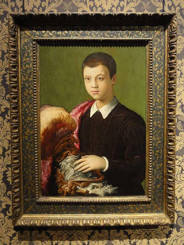 Portrait of an Aristocratic Youth (possibly Gian Battista Salviati)