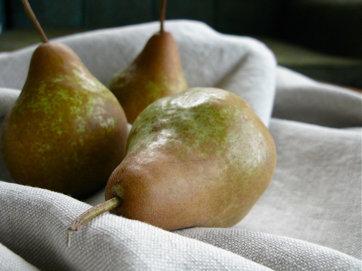 autumn pear varieties 002