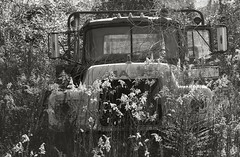 I've come undone (steverichard) Tags: auto usa abandoned broken overgrown field truck mono photo weeds image down lorry american vehicle roadside wreck mack junker haulage steverichard srichardimagescom