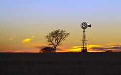 Heart of Texas (Chandler Photography) Tags: sunset sky tree nature windmill beauty outdoors texas state farmland burkburnett