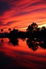Flames And Mirrors (joecrowaz) Tags: city red wild arizona color nature water phoenix clouds canon reflections raw sundown ngc manual drama ef50mmf18ii inspiredbylove 550d t2i granadapark
