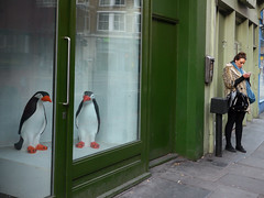 Penguins (davemason) Tags: street colour window shop ipod display hoxton eastlondon