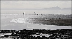 Pettycur-Burntisland Sand Flats (Dysartian) Tags: people dog dogs water scotland sand fife walkers arthursseat firthofforth salisburycrags kinghorn burntisland pettycur sandflats dysartian photographybydysartian thesilveryforth