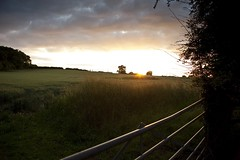 Hedgerow Sunset (01) (menickstephensorg) Tags: wood sunset summer june metal wooden gate hedge worcestershire canonef2470mmf28lusm canoneos5dmk2