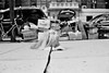 done walking (Charley Lhasa) Tags: leica nyc newyorkcity bw dog film 35mm walk manhattan delta scan m42 upperwestside leash ilford ilforddelta400 charley uws lhasaapso lti onstrike sekonic leicam42 skylightfilter charleylhasa software:adobe=lightroom nokton35mmf14 file:original=jpeg lhasatude sekonictwinmate lens:voigtlander=3514 filter:bw=kr15skylight camera:leica=m42 set:name=newnew digitalminilab meter:sekonic=l208twinmate image:number=582902a0636 date:uploaded=110630170752 set:name=lti317907 lti:scan=317907 set:name=m420009 folder:name=5829 roll:number=m420009