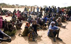 UNHCR News Story: Pressure grows at Dadaab complex amid fresh influx of Somali refugees (UNHCR) Tags: africa news men children women war kenya refugees border crowd hijab safety help aid health kobe drought yemen arrival ethiopia shelter information protection assistance registration unhcr accomodation somalia exodus hornofafrica displacement newsstory eastafrica refugeecamp fooddistribution idps soko idp internalconflict transitcentre dadaab displacedpeople somalirefugees fightings dhobley unrefugeeagency eastandhornofafrica aidagencies emergencycentre dolloado forciblydisplacedpersons bokolmanyo malkadida dagahleycamp lowerjuba