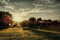 Berlin (GZZT) Tags: sun berlin grass germany wolke wolken sonne bume mb baum tiergarten rasen kanzleramt sonnenschein 030 guessedberlin gwbherreichhorn gzzt martinbriese heinrichvongagernstrase