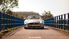 2009 Jaguar XK-R Convertible (Thomas van Rooij) Tags: charity bridge summer classic cars netherlands dutch car nijmegen photography grey nikon warm dof thomas rally nederland convertible automotive run business event exotic jaguar cabrio supercar exotics supercars cabriolet xkr xk evenement 2011 tourrit rooij thomasvanrooij businessrallynijmegen
