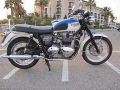 Asiento de Triumph Bonneville retapizado en dos colores (Tapizados y gel para asientos de moto) Tags: moto gel asiento tapicero tapizar viscogel