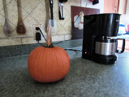 Bake a Pumpkin, Heat up your Kitchen