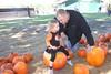 IMG_8939 (drjeeeol) Tags: pumpkin katie pumpkins pumpkinpatch triplets toddlers chaz fallfestival 2011 36monthsold painteroaksacademy