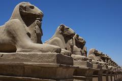 Karnak temple (Miquel99) Tags: temple egypt nile egipto karnak luxor templo nilo 100commentgroup mygearandme mygearandmepremium mygearandmebronze mygearandmesilver mygearandmegold