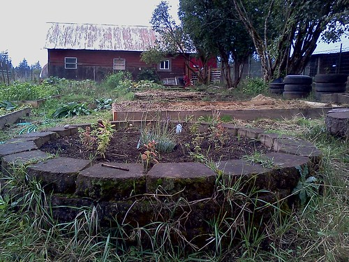 lavender herb circle