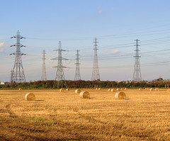 Power and Land at Preston (Tony Worrall Foto) Tags: uk autumn england sky food fall field lines electric season outside photo nice power image earth farm framed country stock tracks straw lancashire marks crop preston late british bales sunlit pylons muddy southribble sesonal penwotham 2011tonyworrall