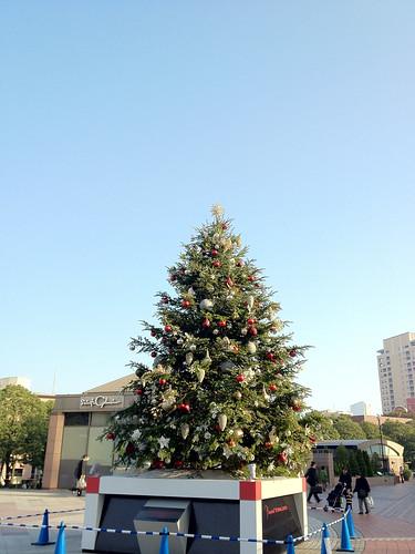 もうクリスマスツリーが!はやいね。