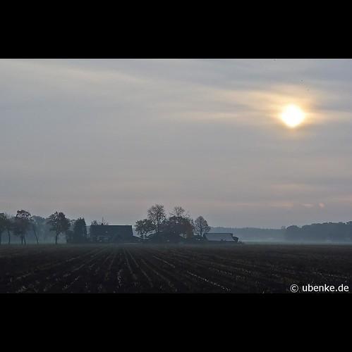 _novembermorning_#2