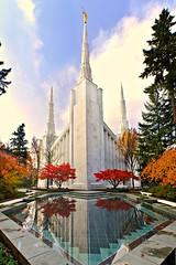 Autumn at the Temple (Darrell Wyatt) Tags: autumn portland temple mormon lds churchofjesuschristoflatterdaysaints ringexcellence