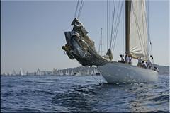 Cambria is waiting (mhobl) Tags: regatta segelschiff sainttropez sailingboat cambriak4