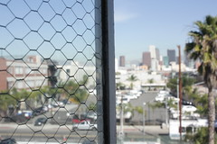DTLA window view. (pi_na) Tags: los view angeles dirty palm dirtywindow