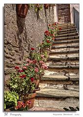 Folgueroles  (Barcelona) (Juan Lpez fotografa) Tags: barcelona flowers espaa flores spain escalera catalua macetas folgueroles jlphotography balanceatmospheres