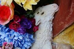 The Lamb (Tinina67) Tags: flowers france rose geocaching pastel silk fake blumen chapel textures lamb tina challenge bunt bois multicolour odc auch seide gers tinina67 aumarron