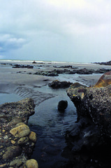 Beach in Jericoacoara (Anna Volpi) Tags: trip travel film beach nature water brasil america nikon rocks jericoacoara south natura f3 rocce acqua northeast viaggio spiaggia brasile sudamerica pellicola nordest