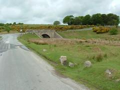 Cadover Bridge C stone South Dartmoor (Bridgemarker Tim) Tags: dartmoor cadover riverplym cstones bridgemarkers devonbridges