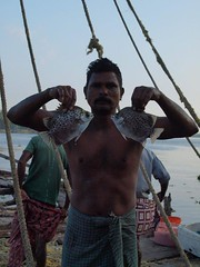 0629 Fishing in the Morning (Don Campolongo (Thanks for 230,000 + views)) Tags: people india men harbor fishing fishermen exotic kochin chinesefishingnets 2011 peopleinindia