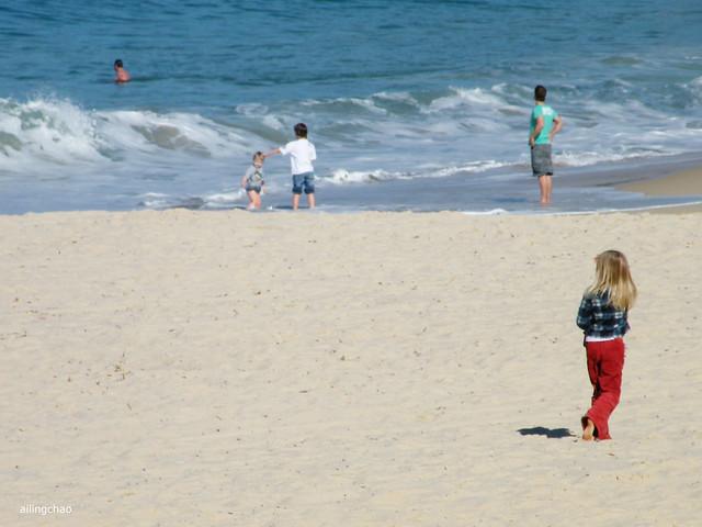沙滩上的一点红。