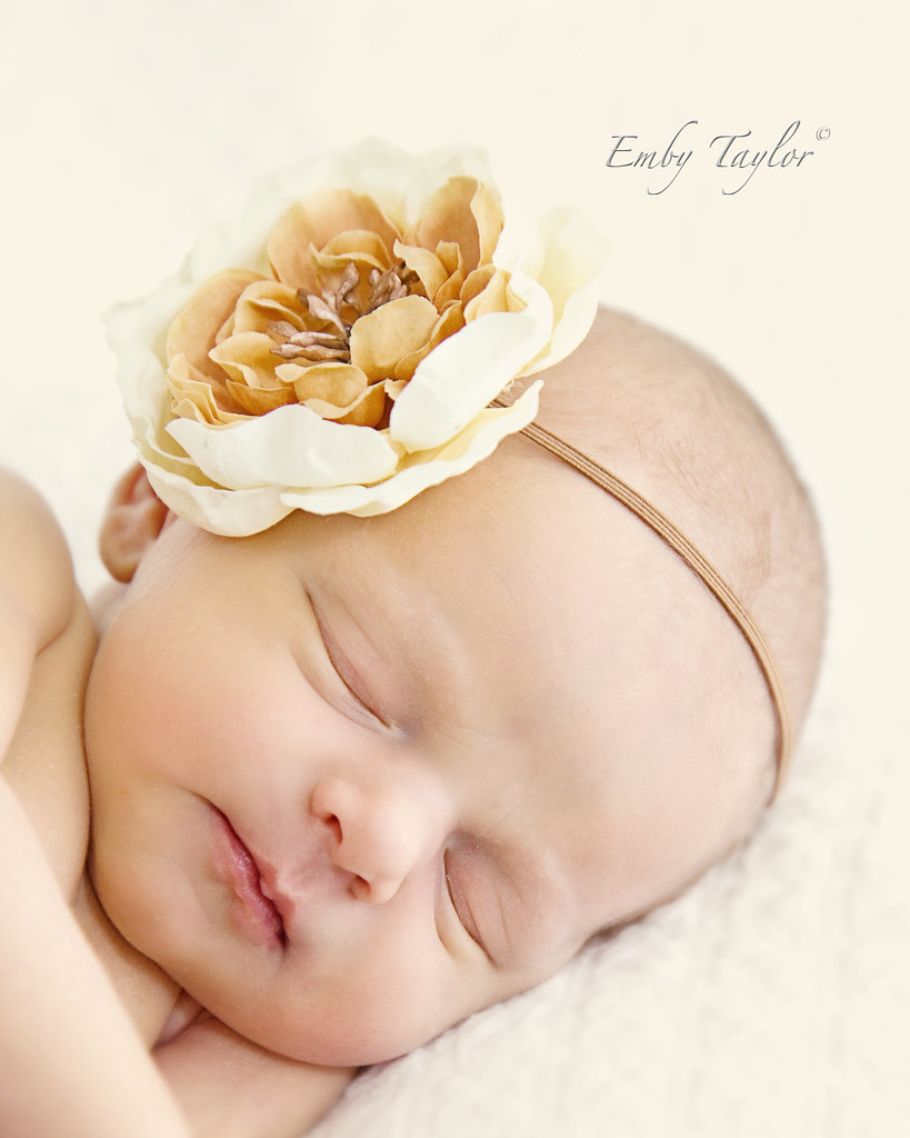 Miss E Kannapolis nc Photographer newborn childrens maternity photography
