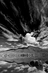 Reach out (Ian Humes) Tags: ireland summer blackandwhite water clouds rural landscape geotagged blackwhite biancoenero blancinegre countykerry noireblanc canon50d loughisknaghiny