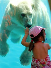 La Flche, Sarthe, France, 2011 (Photox0906) Tags: bear pink blue white france water girl look animal ros