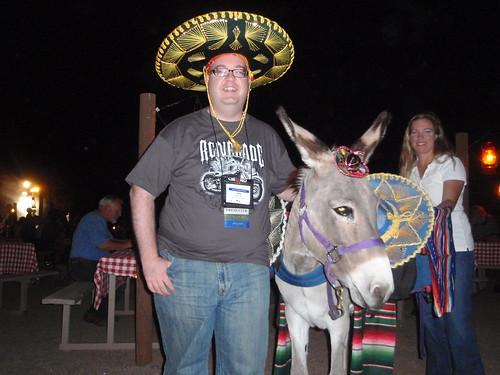 donkey and I