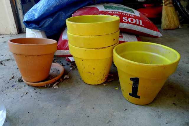 Dingy Yellow Pots