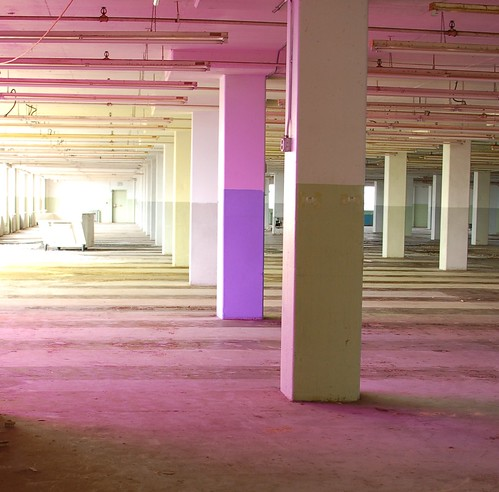 Robin Salant Installation at the Sears Crosstown Building