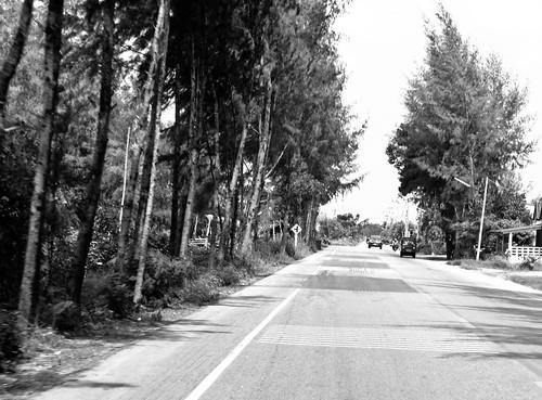 IMG_6588 Songkhla,宋卡