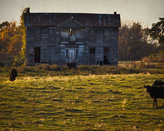 Hershlinger House (Rodney Harvey) Tags: abandoned farmhouse rural decay oldhouse missouri abandonedhouse pioneer missouririver