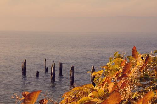 lac pinède