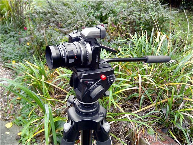 Sony NEX-5N Voigtlander 75mm f/2.5 Heliar