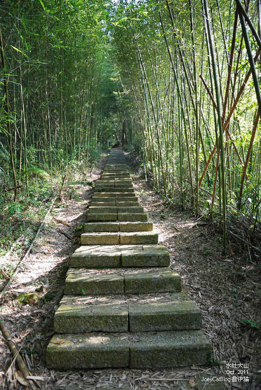 2011_1026水社大山DSC_2916