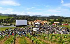El cine llega a los viñedos de Mendoza