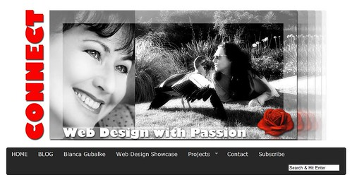 WebDesign with Passion with Bianca Gubalke by totemtoeren