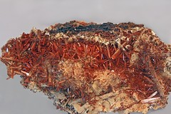Crocoite (Ron Wolf) Tags: nature crystal australia mineral geology ore earthscience crocoite mineralogy monoclinic
