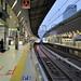 E2 and E4 Shinkansen Trains at Tokyo Station
