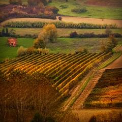 la casetta rosa (* onda *) Tags: colors italia near emotions monferrato thepinksmallhouse