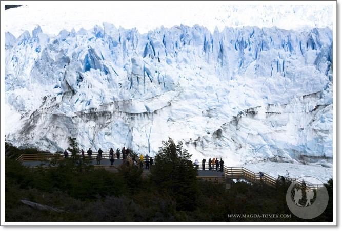2011 11 11_Magda i Tomek Dookola Swiata_Glaciar Perito MorenoDSC_0571